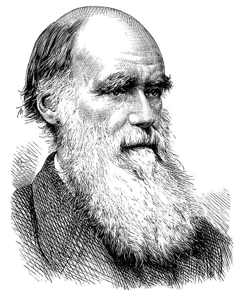 Charles Darwin S Natural Selection Theory
