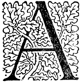 Page 68 initial from The Fables of Æsop (Jacobs).png