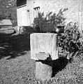 Panj iz votlega debla, Vrhnika 1962.jpg