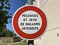Panneau B19 Pelouses Jeux Ballons Interdits Rue Jean Moulin St Laurent Saône 2.jpg