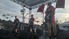 Pansy Division performing in 2016