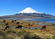 Lago Chungar� e aos fundos o vulc�o Parinacota.