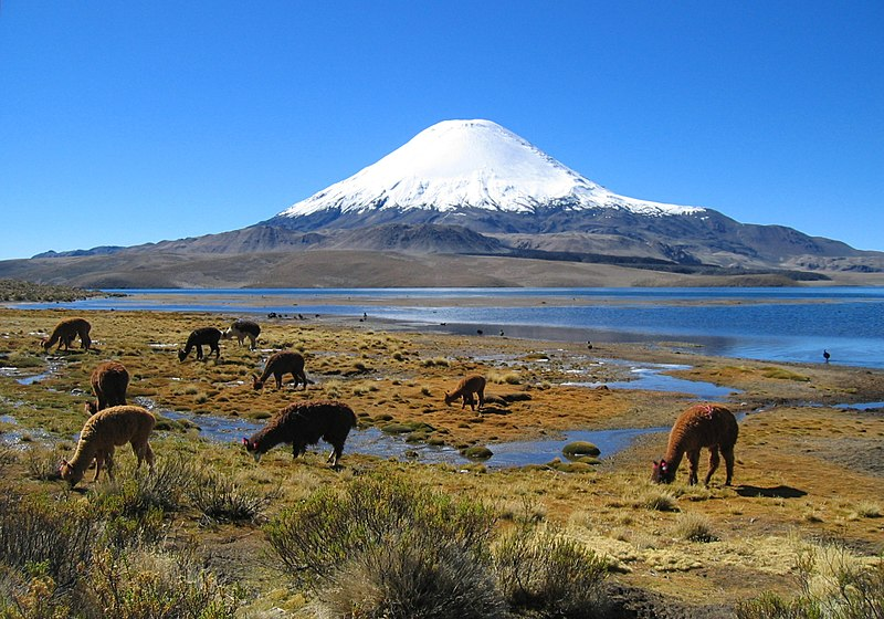 File:Parinacota volcano.jpg