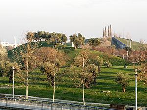 Parque Juan Carlos I view03
