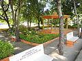 Parque de La Caya.JPG
