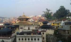 Pashupatinath Temple - World Heritage Site, Pashupatinath Temple