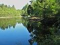 Penninghame Pond.jpg