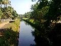 Periyar valley irrigation canal, Airapuram - panoramio.jpg