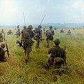 Photograph of Troops Moving across a Rice Field in Search of Viet Cong.jpg