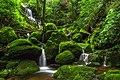 Phu Soi Dao National Park (5).jpg