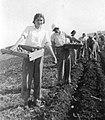 PikiWiki Israel 1213 Kibutz Gan-Shmuel ks28- 3 גן-שמואל-זריעת תפוחי אדמה 1935-8.JPG