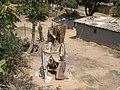 Pit latrine (3233256371).jpg