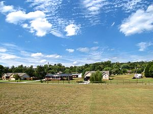 Plainview, Tennessee - Houses in Plainview