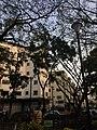 Plaza Las Delicias de Sabana Grande.jpg