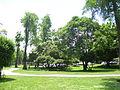 Plaza Verde.jpg