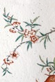 Plommonblommor målat på porslin, 1723-1735, Yongzheng - Hallwylska museet - 107696.tif