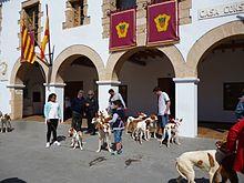 Ibiza Karte Umriss.Ibiza Wikipedia