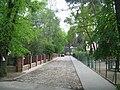 Podkowa Lesna street.jpg