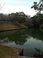 Pond near Kumamoto Castle.jpg