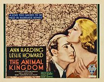 Poster - Animal Kingdom, The 01.jpg