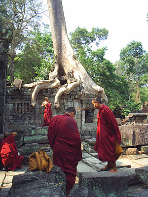 Preah Khan - Image: Preahkhantreemonks 01