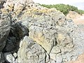 Precambrian Pillow Lavas - geograph.org.uk - 255906.jpg