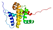 Protein BCL2L2 PDB 1mk3.png