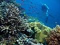 Pulau Piaynemo, Raja Ampat.jpg