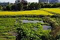 Qiaixi 洽溪 - panoramio.jpg