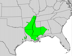Quercus texana map.png