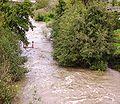 Río Boeza.jpg
