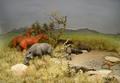 ROM-Miocene-Diorama3.png