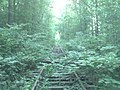 RVRR tracks about 1,000 from the bridge - panoramio.jpg
