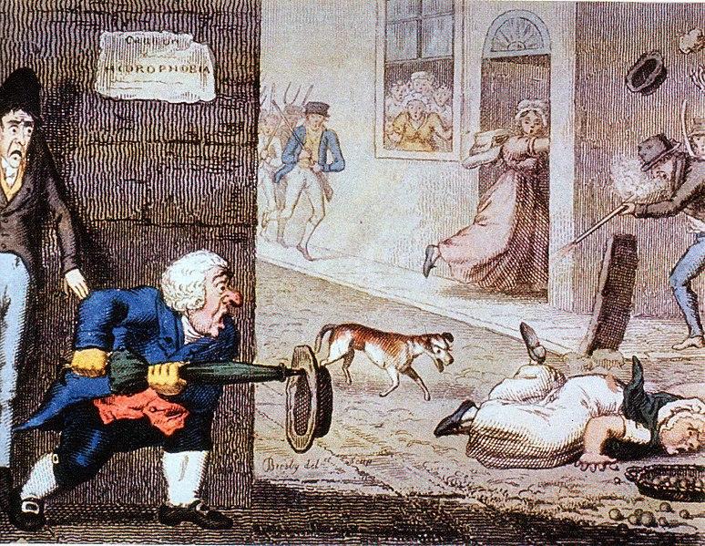 File:Rabies cartoon circa 1826.jpg