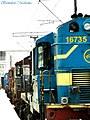 Rail Avrodh^^^ The Alco queue in LJN - Flickr - Dr. Santulan Mahanta.jpg