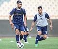 Ramin Rezaeian and Morteza Pouraliganji.jpg