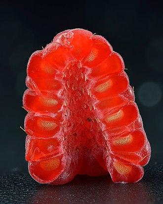 Raspberry - halved (Rubus idaeus).jpg