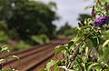 Redcar East railway station MMB 05.jpg