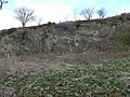 Remains of an old quarry - geograph.org.uk - 773835.jpg