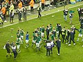 Republic of Ireland national football team 2011.jpg