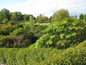 Lade, Trondheim - Ringve Botanical Garden