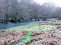 River Edw - geograph.org.uk - 684950.jpg