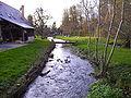 Rivière d'Angerville.JPG