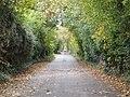 Road (180412899).jpeg
