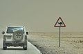 Road south-west from Al Wakrah.jpg