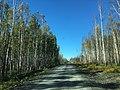 Road to Tanana Dedication (29316731176).jpg