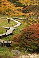 Rokko alpine botanical garden23n3200.jpg