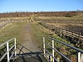 Rother Valley Country Park - Footpath View - geograph.org.uk - 1129502.jpg