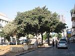 Rothschild Boulevard5.jpg