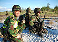 Royal Brunei Land Force soldiers, 2010.jpg